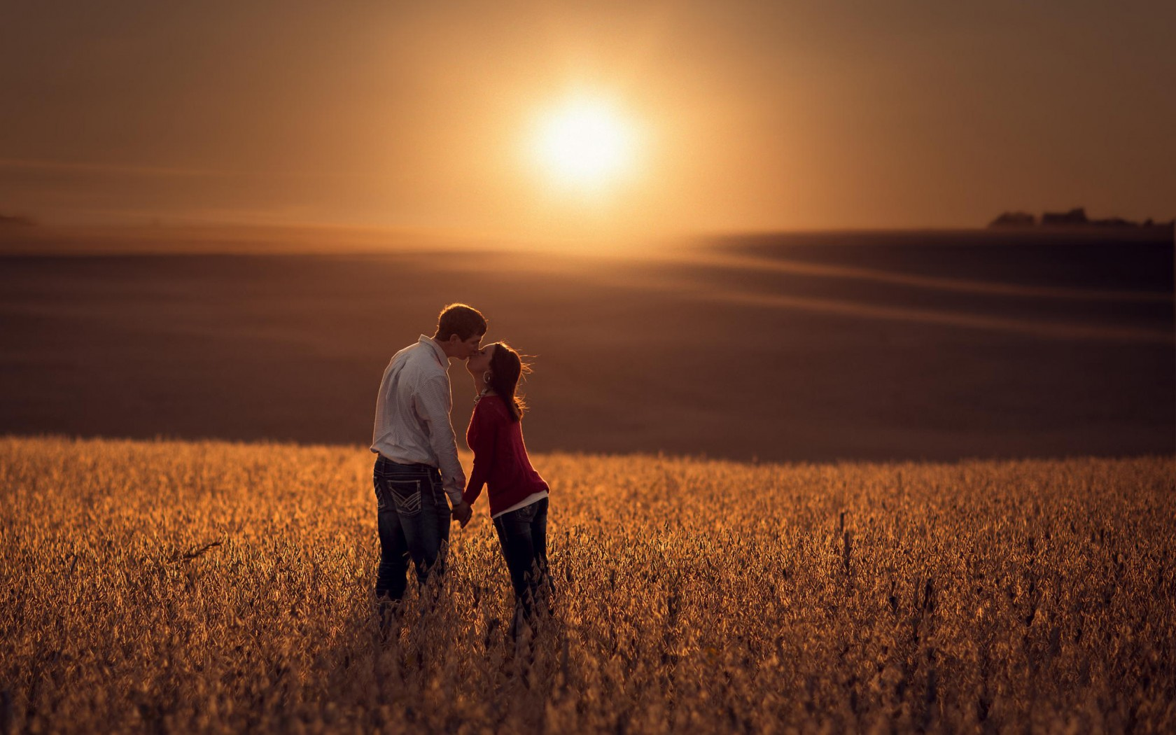 lovers kiss at sunset field